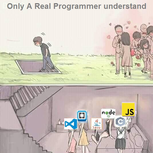 Only A Real Programmer understand