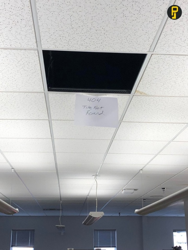 Roof in the office started leaking, lost a few tiles.