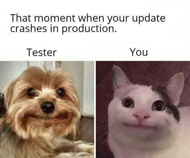 That moment when your update crashes in production